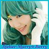 アトリエ:マリー☆ベリー