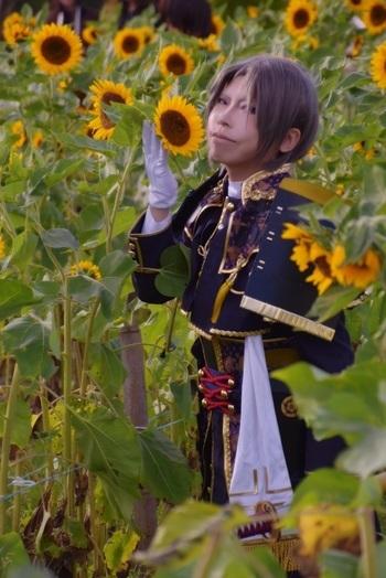 きわべと向日葵